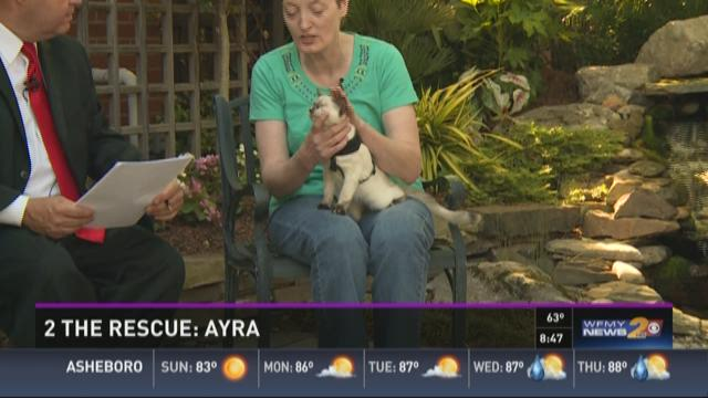 2 The Rescue: Ayra