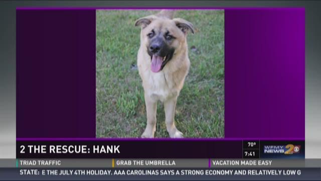 2 The Rescue:  Hank
