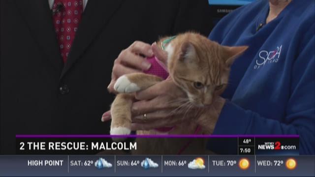 2 The Rescue:  Malcolm