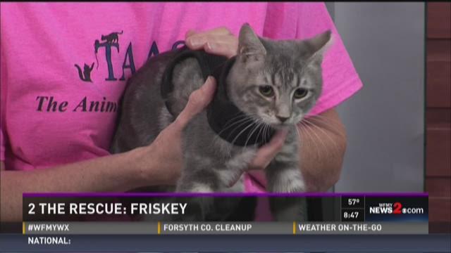 2 The Rescue: Friskey