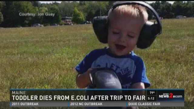 Toddler Gets E.Coli From Maine Fair