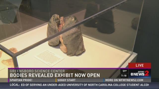 """""""Bodies Revealed"""" Exhibit Now Open 3"""
